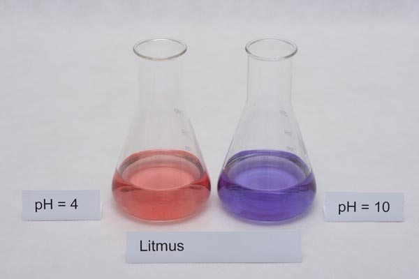 litmus paper chemistry What is litmus paper source(s): for example, chlorine gas turns blue litmus paper white (in chemistry terms, we say that the litmus paper is bleached.