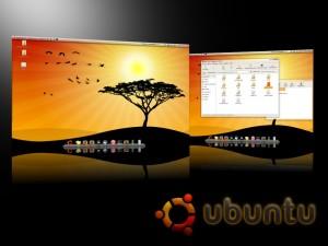 Image of Ubuntu 10.04
