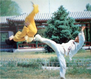 Image of Incredible Kung Fu!