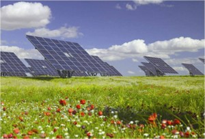 Image of Solar Farm