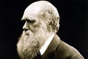 image of charles darwin