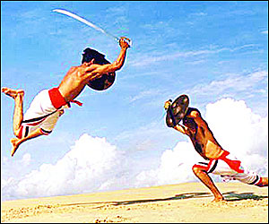image of kalaripayattu